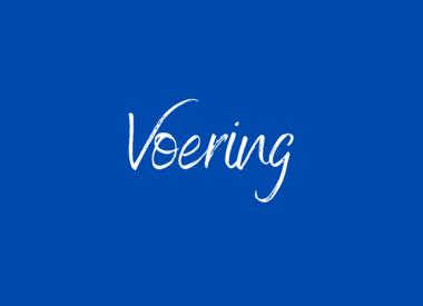 Voering