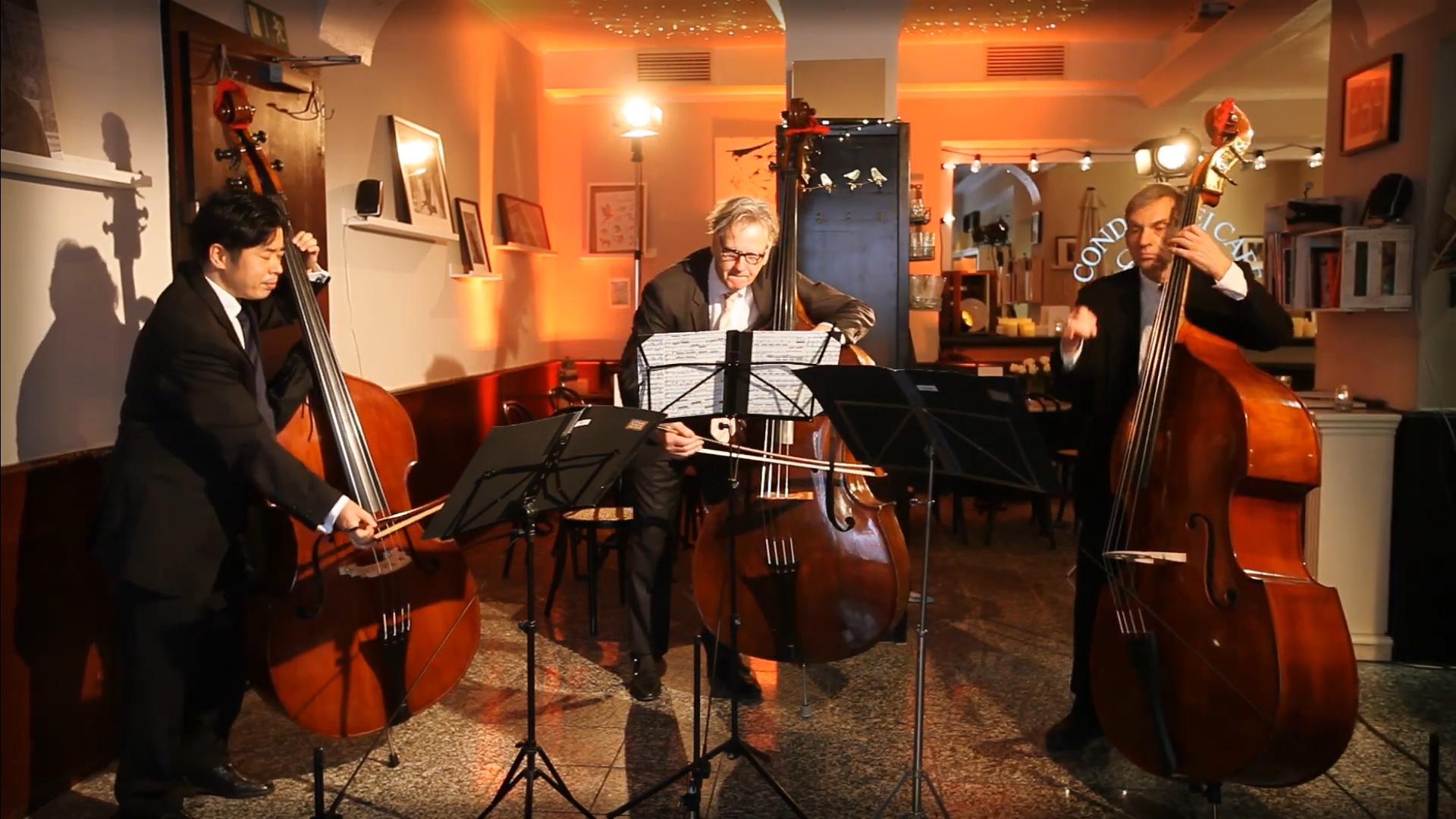 Göttinger Symphonieorchester