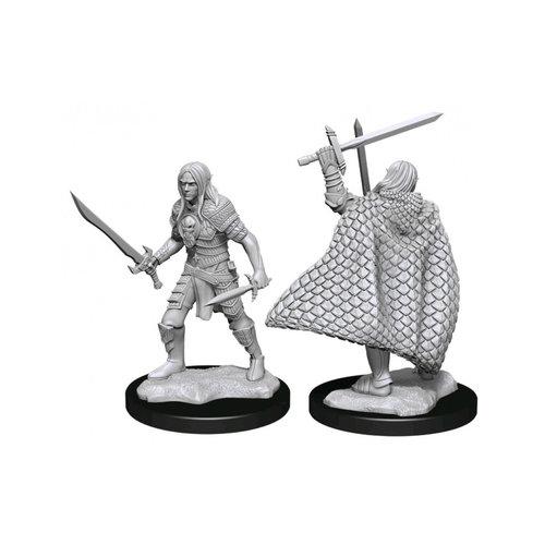 Wizk!ds Unpainted Miniatures-  Elf Fighter Male (PF)