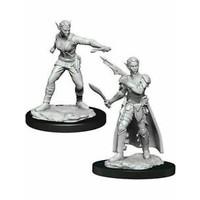 Unpainted Miniatures- Shifter Rogue Female  (5E)