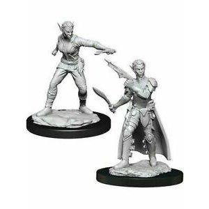 Wizk!ds Unpainted Miniatures- Shifter Rogue Female  (5E)