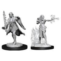 Unpainted Miniatures- Multiclass Warlock + Sorceror Female  (5E)