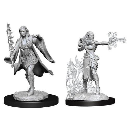 Wizk!ds Unpainted Miniatures- Multiclass Warlock + Sorceror Female  (5E)