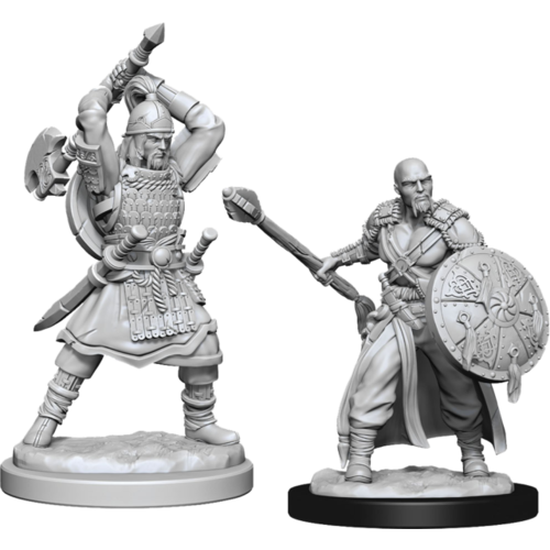 Wizk!ds Unpainted Miniatures- Human Barbarian Male (5E)