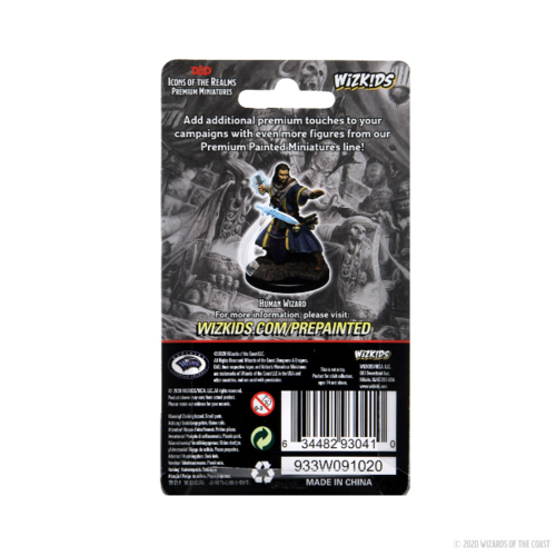 D&D Icons of the Realms Premium Figure: Human Male Wizard