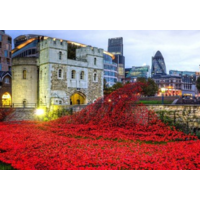 Puzzel- Tower of London Remembrance (140)