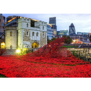 Wentworth- Puzzel- Tower of London Remembrance (140)