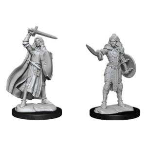 Wizk!ds Unpainted Miniatures: Human Champion Female