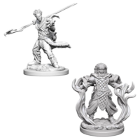 Unpainted Miniatures - Human Druid Male