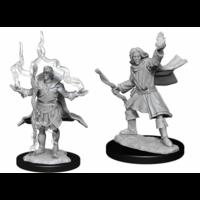 Pathfinder Deepcuts - Elf Sorcerer Male