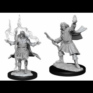 Wizk!ds Pathfinder Deepcuts - Elf Sorcerer Male