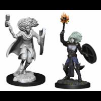 D&D Nolzur's Marvelous Miniatures - Changeling Cleric