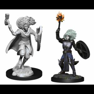 Wizk!ds D&D Nolzur's Marvelous Miniatures - Changeling Cleric