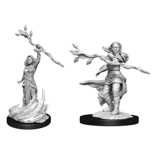 Wizk!ds D&D Nolzur's Marvelous Miniatures - Human Druid Female