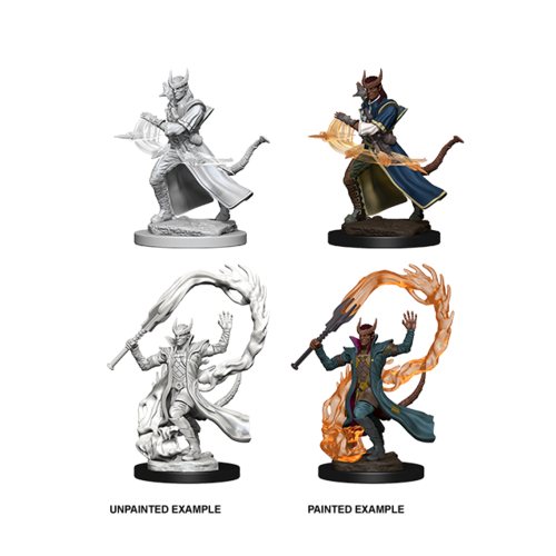 Wizk!ds Unpainted Miniatures- Tiefling Male Sorcerer (5E)