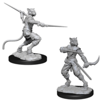Unpainted Miniatures- Tabaxi Male Rogue