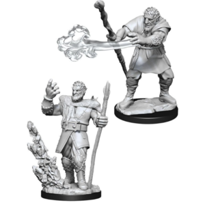 Wizk!ds D&D Icons of the Realms - Male Firbolg Druis Premium Figure