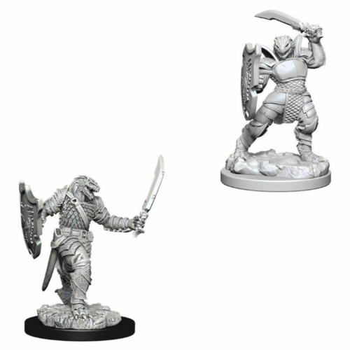 Wizk!ds Unpainted Miniatures- Dragonborn Female Paladin (5E)