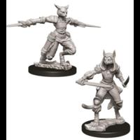 Unpainted Miniatures- Tabaxi Female Rogue