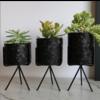 Talateca Flower Pot Ananda - Black - Large ø10 cm x 12 cm