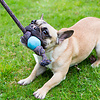Beco Ball with Rope