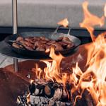 Vuurschaal BBQ's