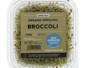 Salad & Sprouts