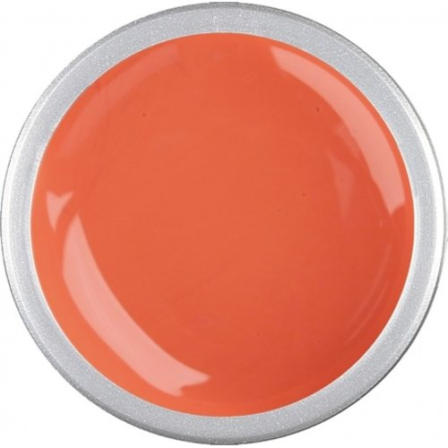 Astra Nails Astra Nails Colored Gel  - SALMON 5gr