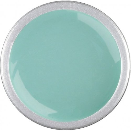 Astra Nails Astra Nails Colored Gel  - PASTEL GREEN 5gr