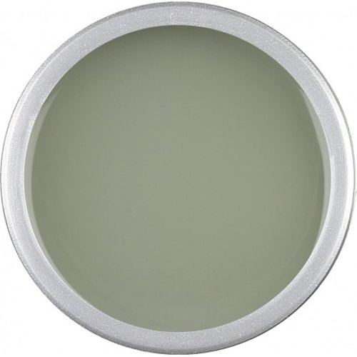 Astra Nails Astra Nails Colored Gel  - GREEN TEA 5gr