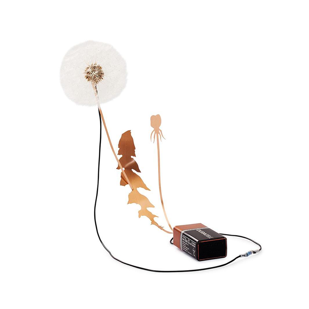 Studio Drift Dandelight (Battery version) - Studio Drift