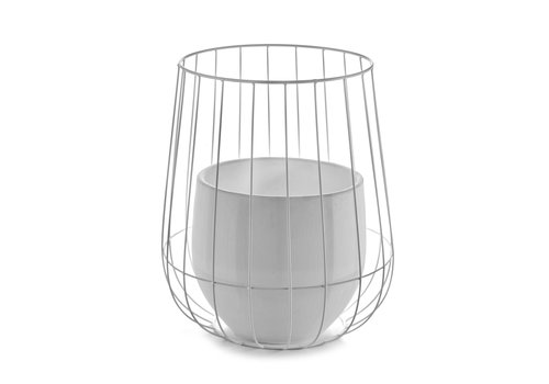 Yellow Lemon Tree Pot in a cage
