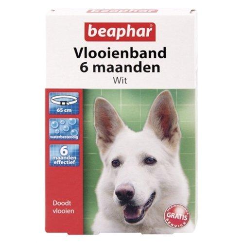 Beaphar Beaphar vlooienband hond wit 6 mnd