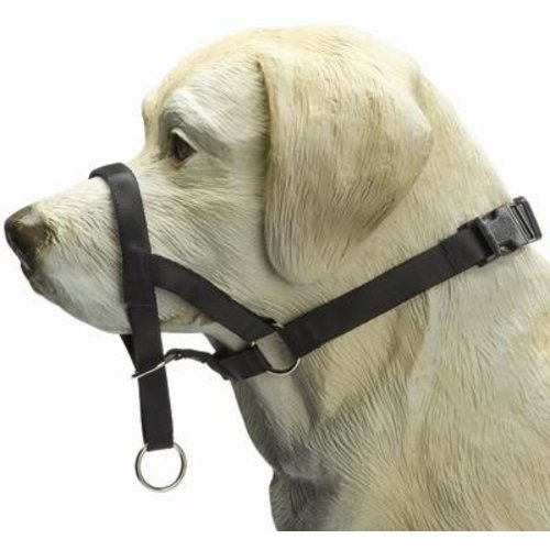 Merkloos Dog control zwart