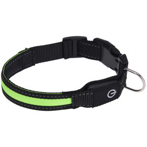 Dogs Collection Dogs Collection hondenhalsband led 34-41 cm nylon groen
