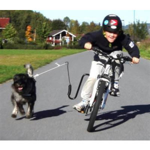Altranet Altranet hondenfietsbeugel Springer 36 mm staal zwart/zilver