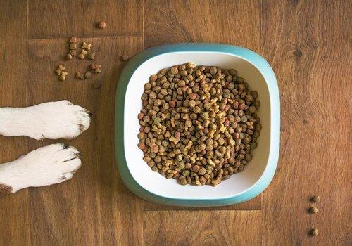 Hondenvoer en  -drinkbakken