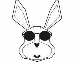 The Cool Rabbit