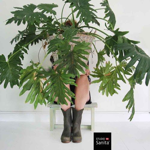 Sanita klomplaarzen Laurel groen 478323