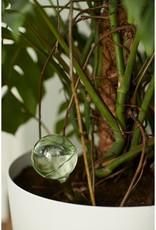 Elho Elho Aqua care (Set of 2) ( transparent)