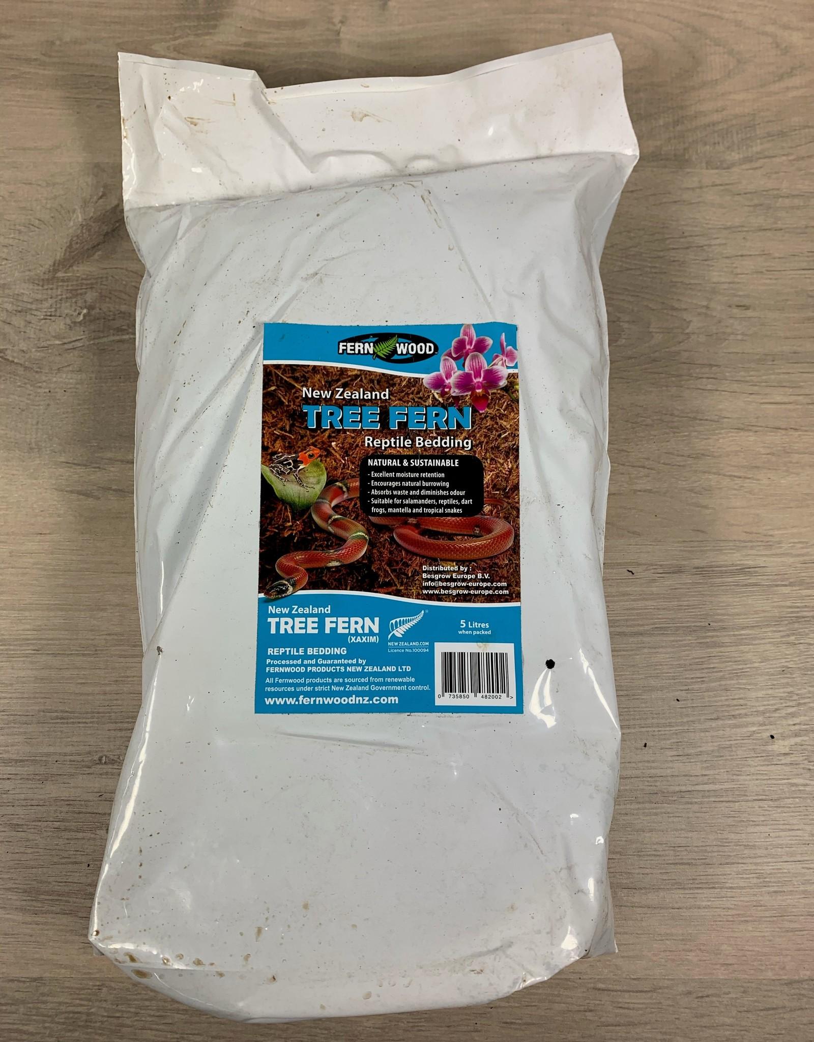Tree Fern Tree Fern Substrate 5 liter
