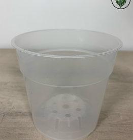 We Love Houseplants Orchid Air pot (A) 11cm (Transparent)