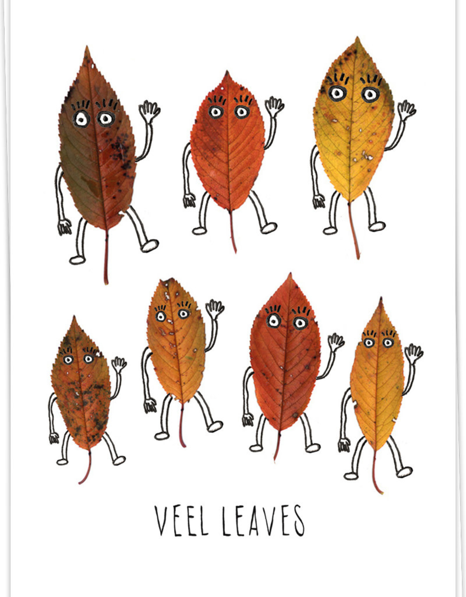 KAART BLANCHE KAART BLANCHE Veel Leaves