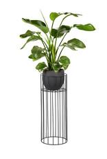 SERAX SERAX VASARO Plant Stand L