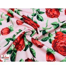Punta Di Roma big flowers rose