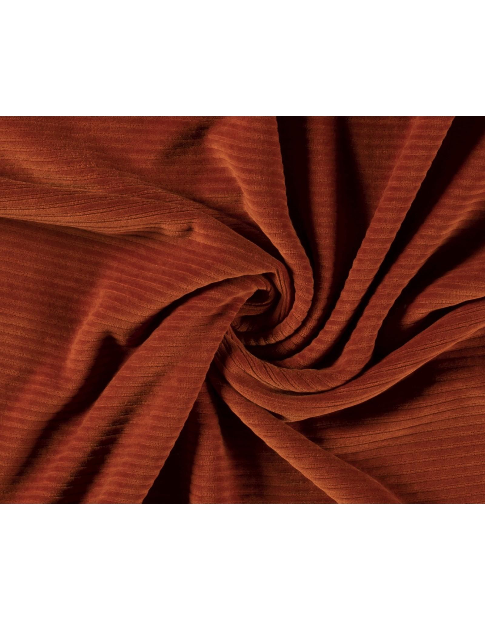 Cotton jersey Corduroy - Brique
