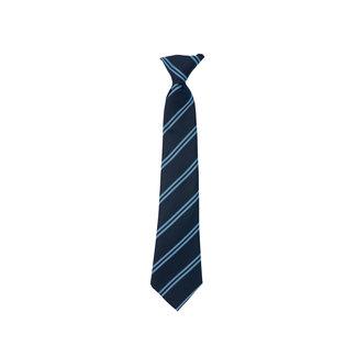 Bromham School Tie