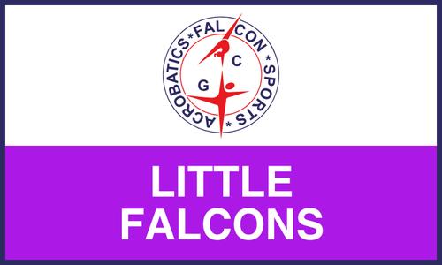 Little Falcons