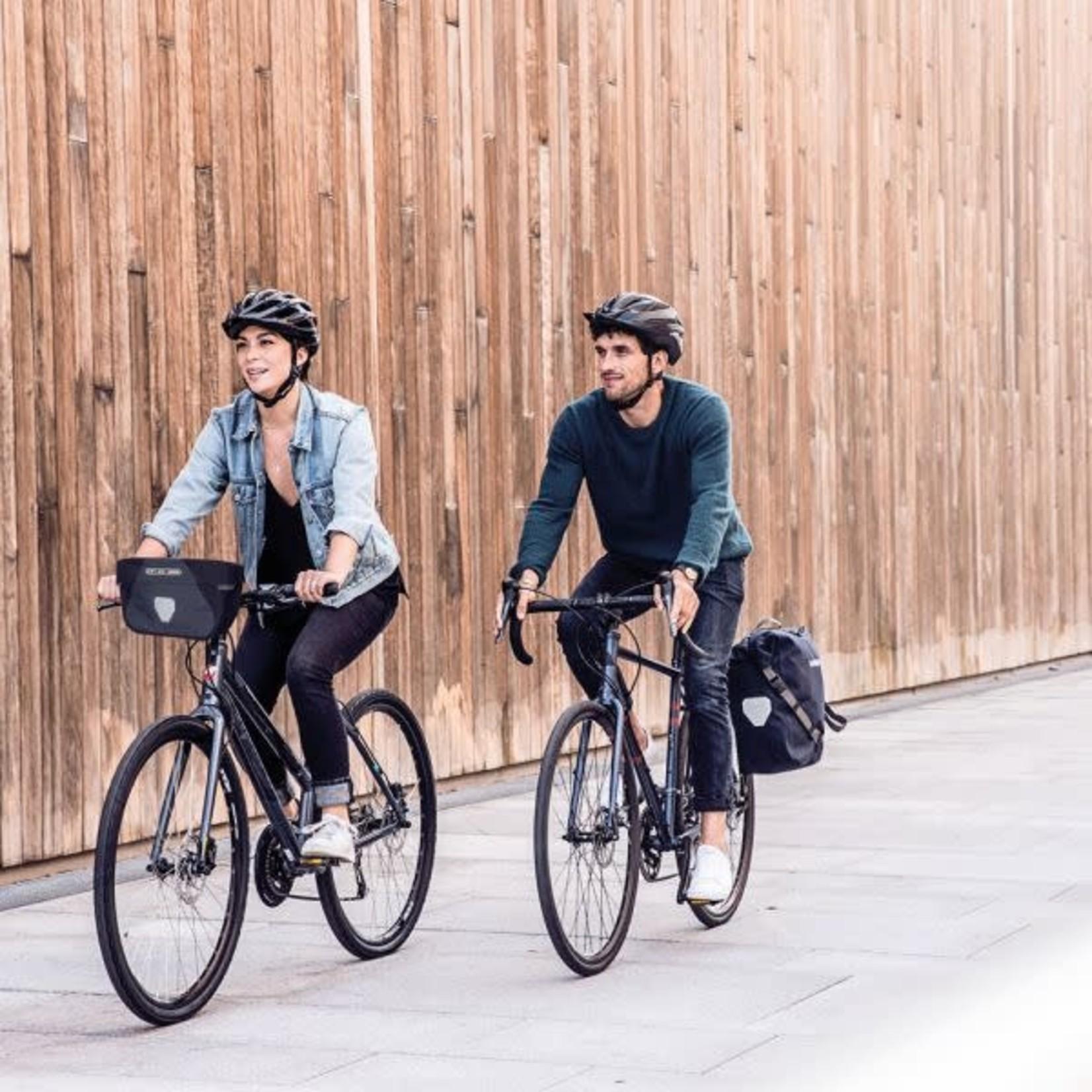 Ortlieb Fietstas enkel Ortlieb Back-Roller Urban QL2.1 20 L pine