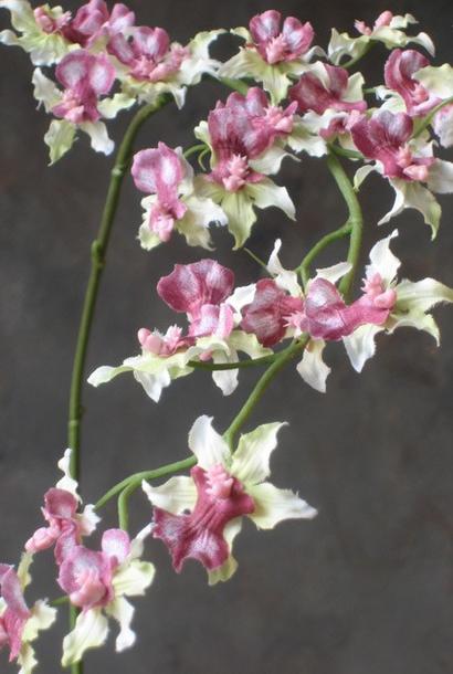 Zijden bloem Oncidium zacht groen roze